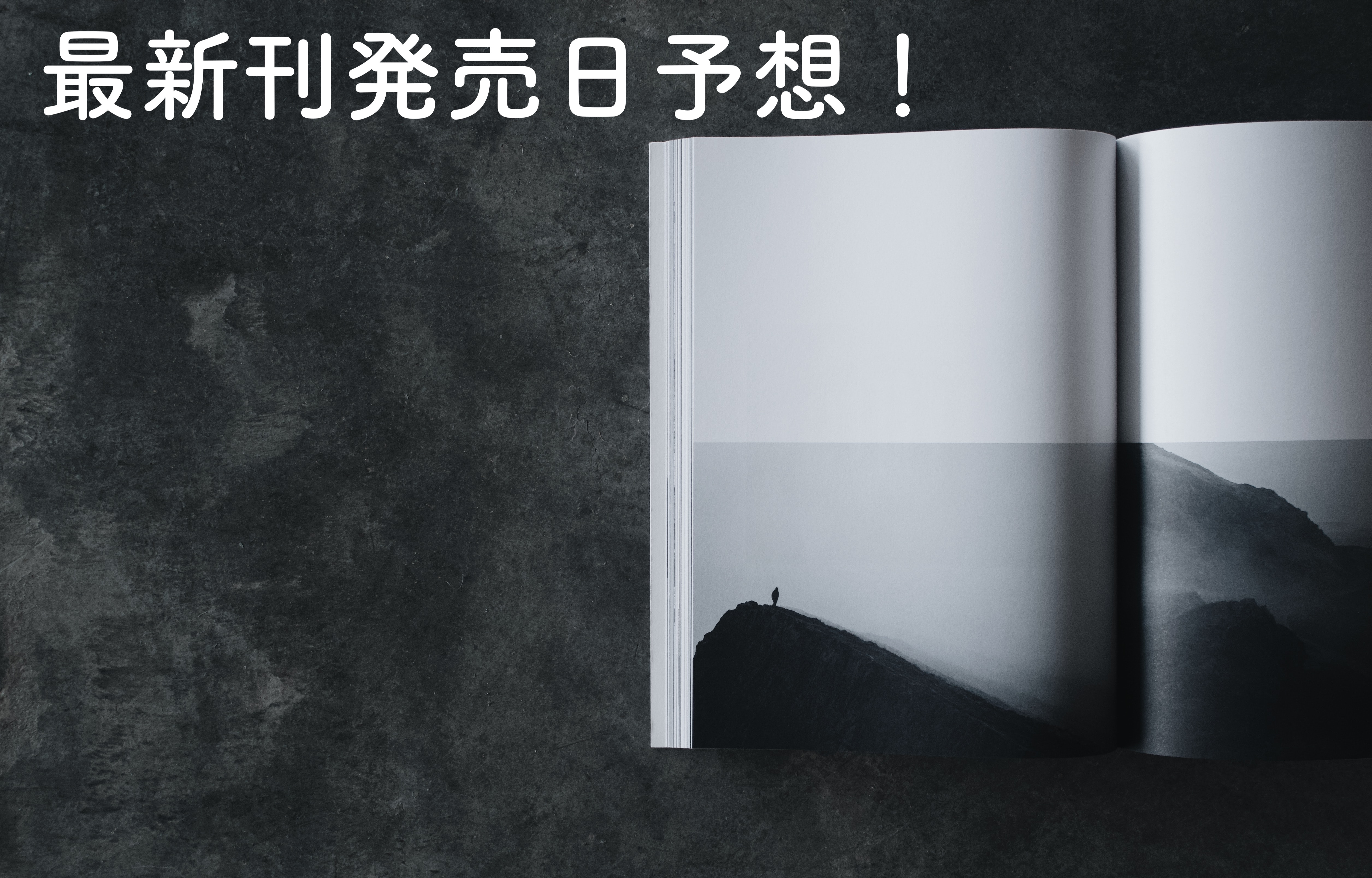 【ヴィジランテ】最新刊11巻の発売日予想!安くお得に読む方法も